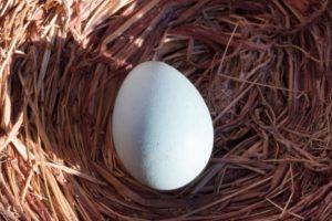 Das Ei symbolisiert das junge Leben (Eigelb) im Tod (Schale) und steht für die Auferstehung