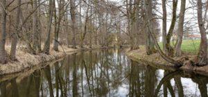 Selbitz; Selbitzradweg; Natur