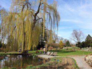 Botanischer Garten Hof; Park; Oberfranken; Stadt Hof