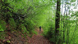 Wandern Geroldsgrün Frankenwald