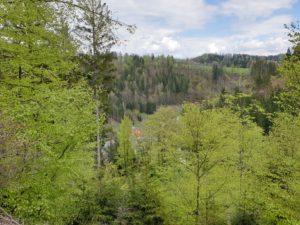 Immer wieder Ausblicke, wie hier auf die Höhen des Frankenwaldes und hinab nach Dürrenwaid.