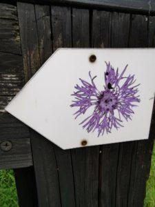 Der Wegweiser zum Lamitzpfad ist mit einer Perücken-Flockenblume gekennzeichnet. Die Rundwanderung ist interessant und lehrreich - nicht nur für Kinder.